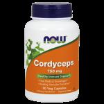 Cordyceps 750 mg 90 vcaps