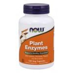 Plant enzymes 240 vcaps